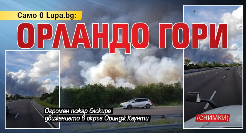 Само в Lupa.bg: Орландо гори (СНИМКИ)