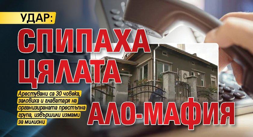 Удар: Спипаха цялата Ало-мафия
