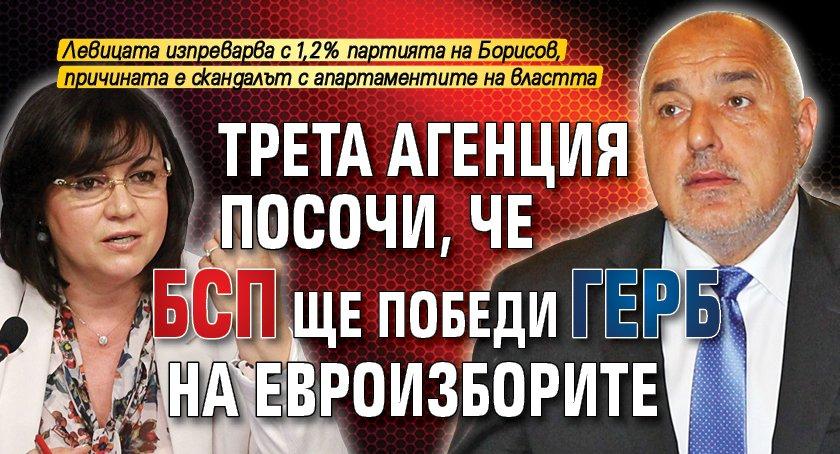 Трета агенция посочи, че БСП ще победи ГЕРБ на евроизборите