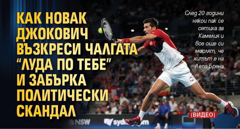 """Как Новак Джокович възкреси чалгата """"Луда по тебе"""" и забърка политически скандал (ВИДЕО)"""
