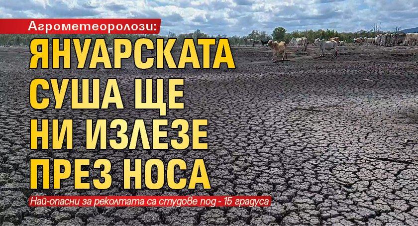 Агрометеоролози: Януарската суша ще ни излезе през носа