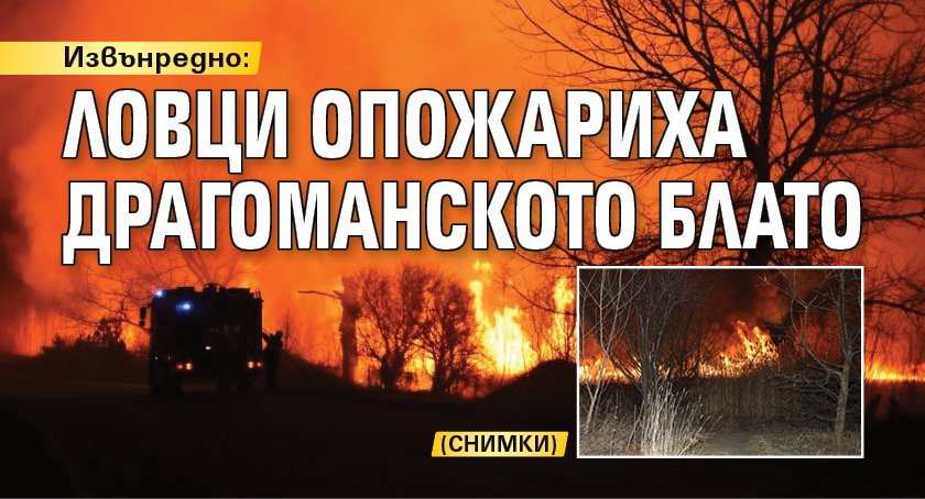 Извънредно: Ловци опожариха Драгоманското блато (снимки)