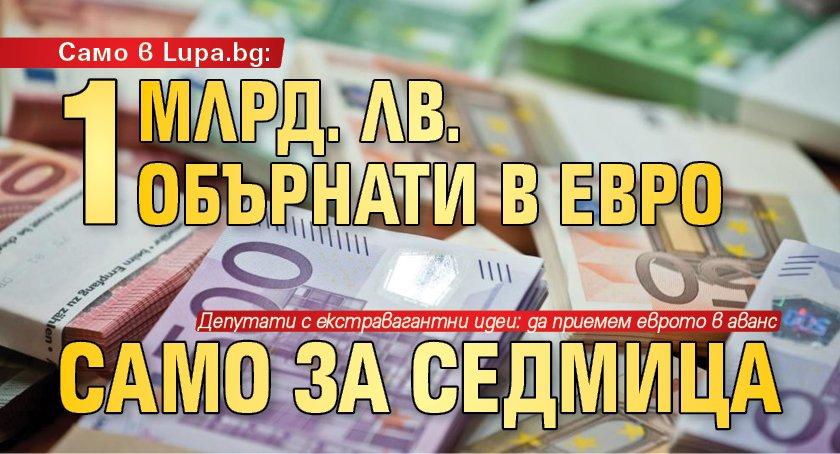 1 млрд. лв. обърнати в евро само за седмица