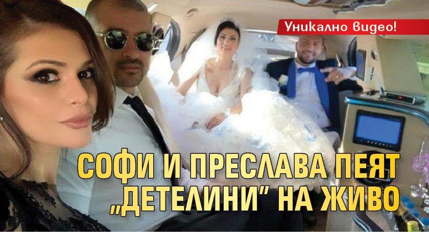 Гринго проговори за Софка (Видео) - Lupa BG