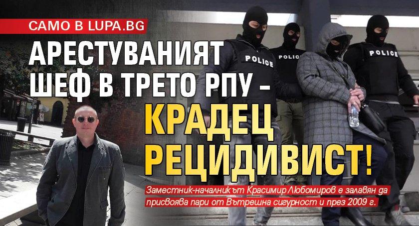 САМО В LUPA.BG Арестуваният шеф в Трето РПУ – крадец рецидивист!