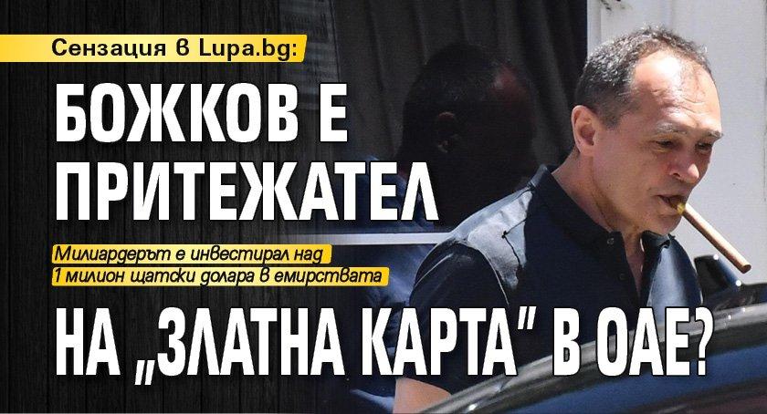 """Сензация в Lupa.bg: Божков е притежател на """"златна карта"""" в ОАЕ?"""