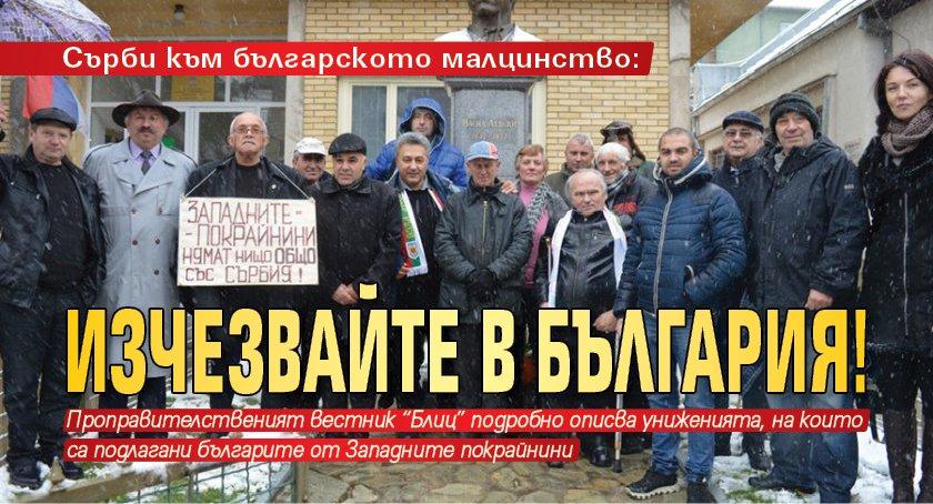 Сърби към българското малцинство: Изчезвайте в България!