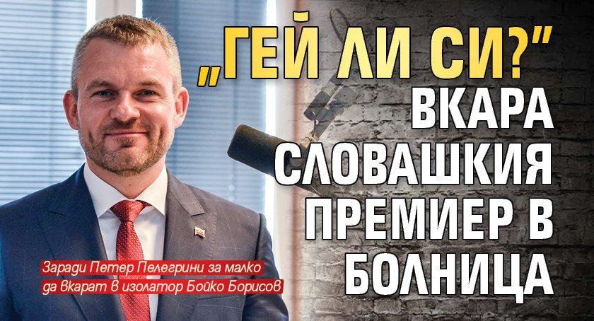"""""""Гей ли си?"""" вкара словашкия премиер в болница"""