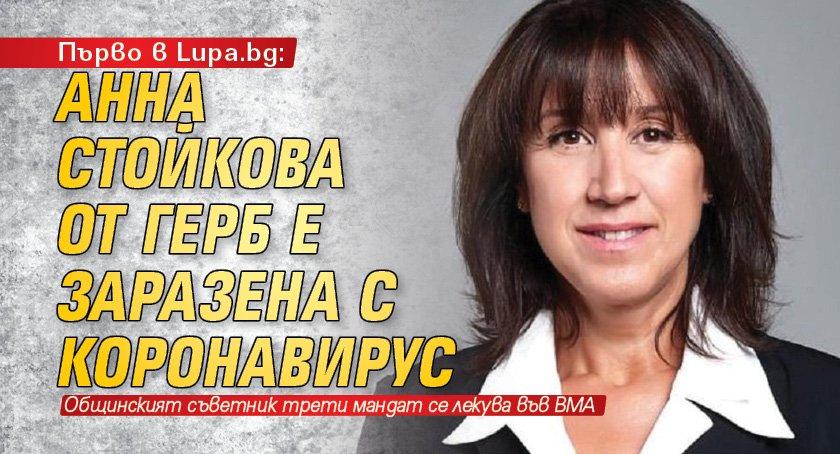 Първо в Lupa.bg: Анна Стойкова от ГЕРБ е заразена с коронавирус
