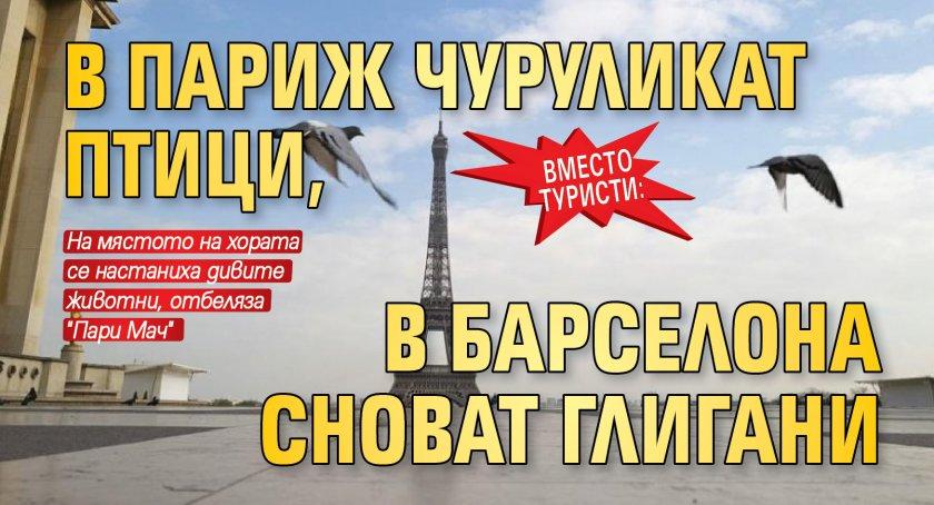 Вместо туристи: В Париж чуруликат птици, в Барселона сноват глигани