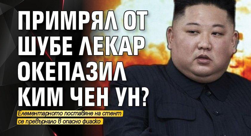 Примрял от шубе лекар окепазил Ким Чен Ун?