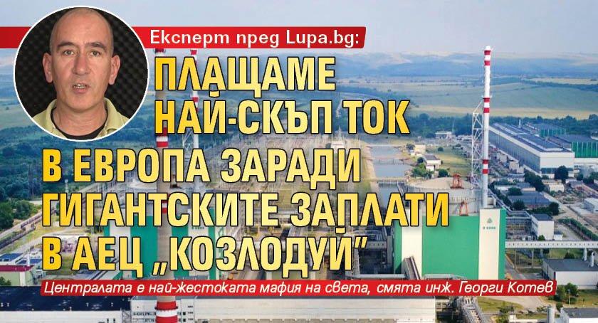"""Експерт пред Lupa.bg: Плащаме най-скъп ток в Европа заради гигантските заплати в АЕЦ """"Козлодуй"""""""