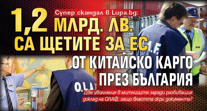 Супер скандал в Lupa.bg: 1,2 млрд. лв. са щетите за ЕС от китайско карго през България