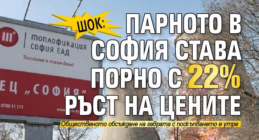 Шок: Парното в София става порно с 22% ръст на цените