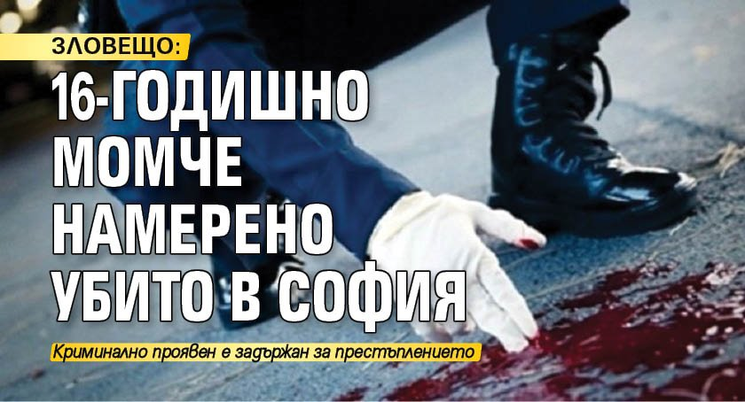 ЗЛОВЕЩО: 16-годишно момче намерено убито в София