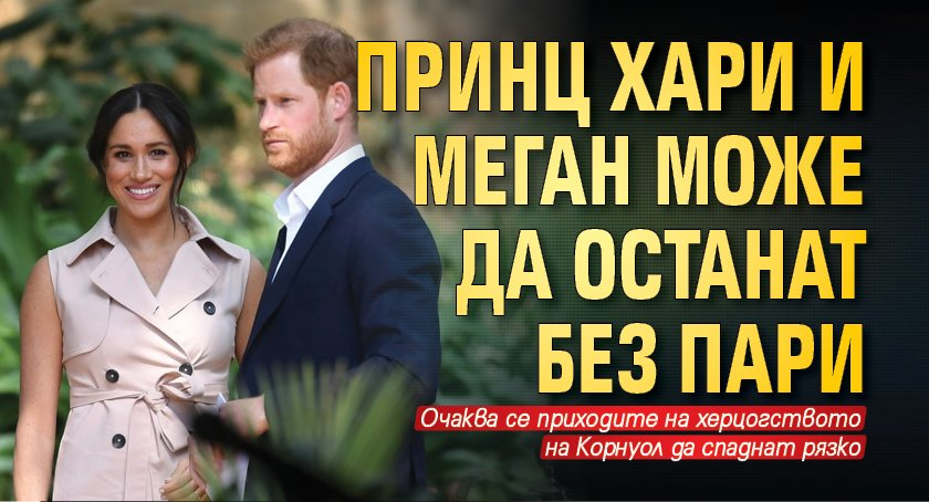 Принц Хари и Меган може да останат без пари