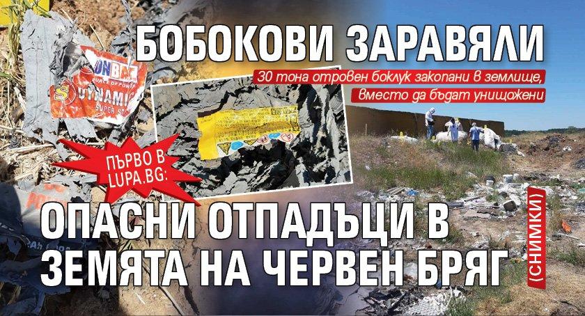 Първо в Lupa.bg: Бобокови заравяли опасни отпадъци в земята на Червен бряг (СНИМКИ)