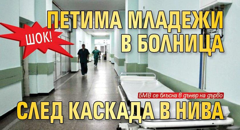 ШОК! Петима младежи в болница след каскада в нива