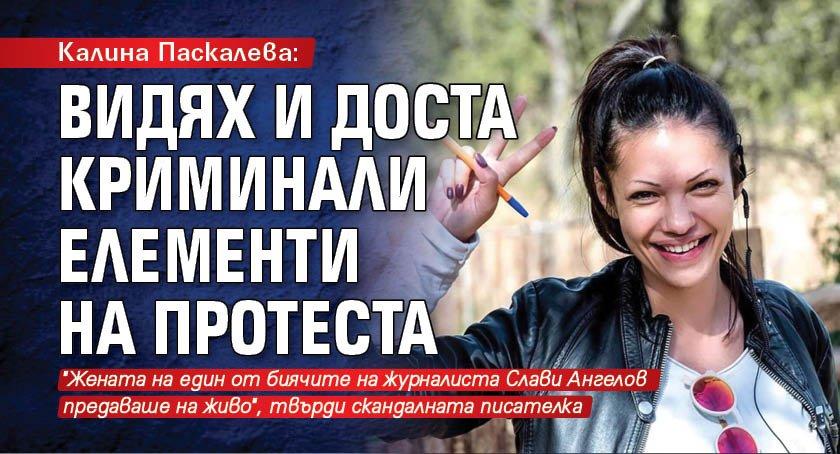 Калина Паскалева: Видях и доста криминали елементи на протеста