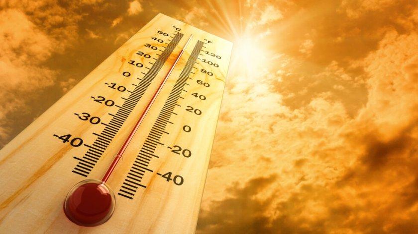 Голяма жега от утре - Lupa BG