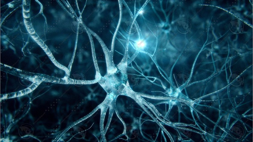 Изкуствен интелект диагностицира COVID-19 с точност 90%