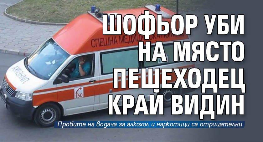 Шофьор уби на място пешеходец край Видин