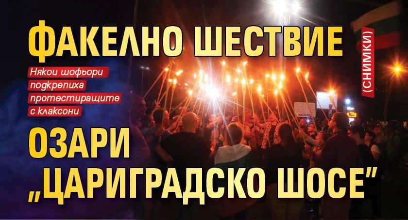 """Факелно шествие озари """"Цариградско шосе"""" (СНИМКИ)"""