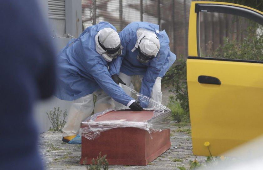 Нашенка издъхна от вируса в Гърция, била на гости в България