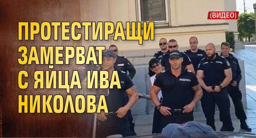 Протестиращи замерват с яйца Ива Николова (ВИДЕО)
