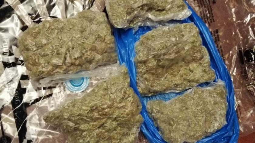 Полицаи иззеха 15 кг канабис