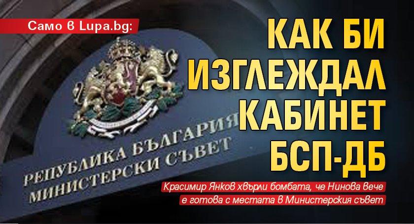 Само в Lupa.bg: Как би изглеждал кабинет БСП-ДБ