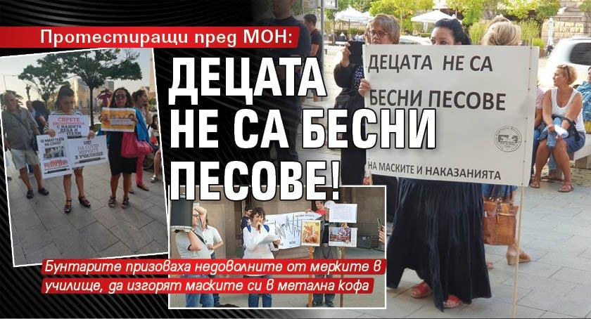 Протестиращи пред МОН: Децата не са бесни песове!