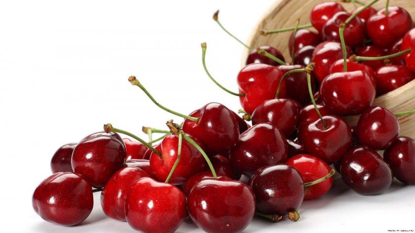 Русия премахна забраната за внос на плодове от Македония