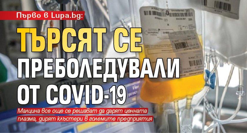 Първо в Lupa.bg: Търсят се преболедували от COVID-19