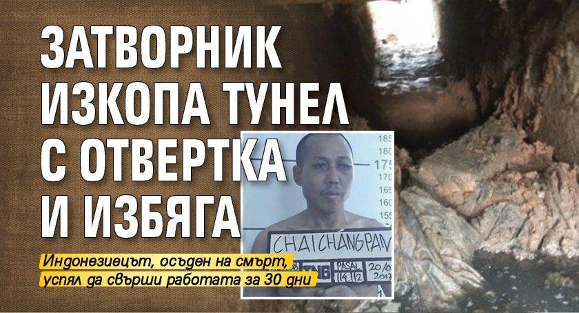 Затворник изкопа тунел с отвертка и избяга