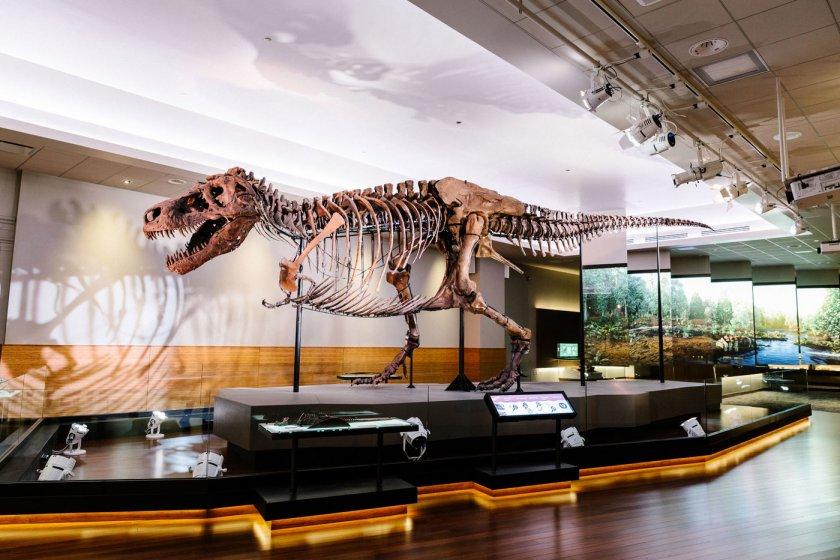 Продадоха скелет от тиранозавър за $31,8 млн.