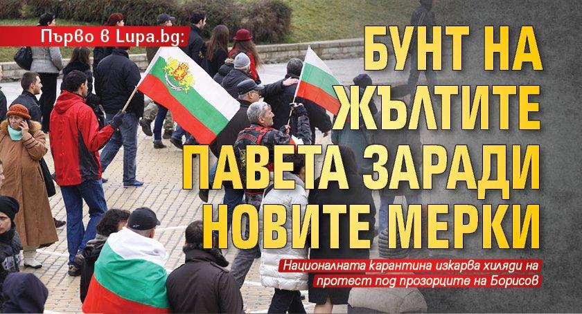 Първо в Lupa.bg: Бунт на жълтите павета заради новите мерки