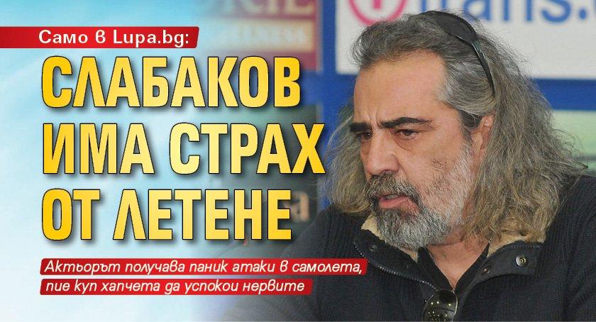 Само в Lupa.bg: Слабаков има страх от летене