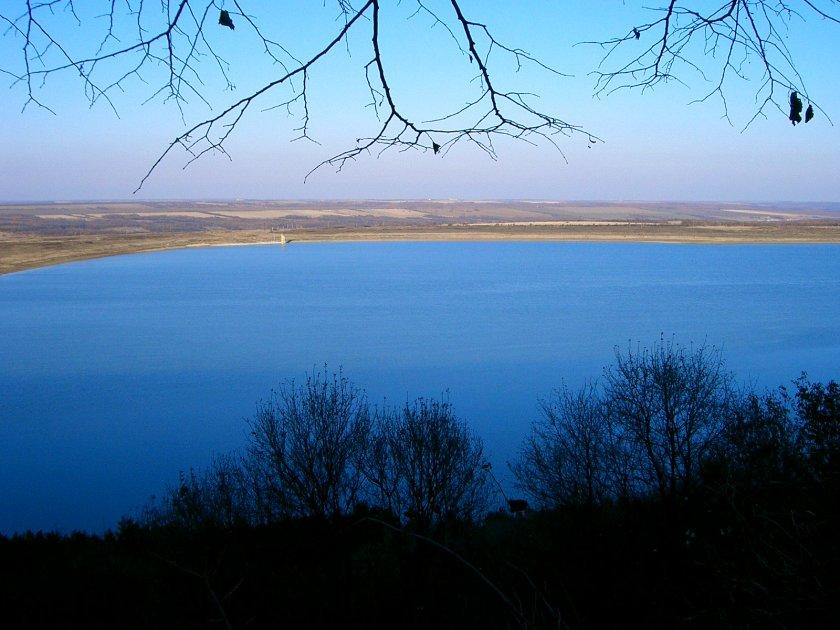 Мъртви шарани по 5 кила откриха в Рабишкото езеро