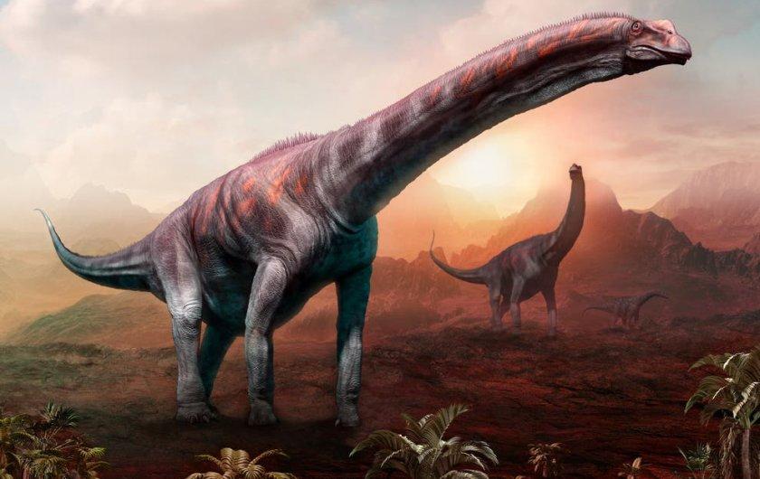 Откриха останки на динозавър, който може да е бил най-голямото животно на Земята