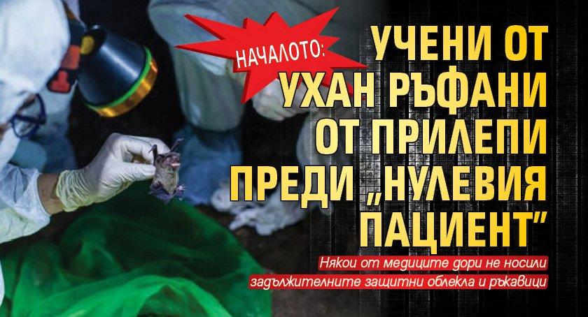 """НАЧАЛОТО: Учени от Ухан ръфани от прилепи преди """"нулевия пациент"""""""