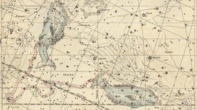 Риби — Седмичен хороскоп (25 — 31 май)