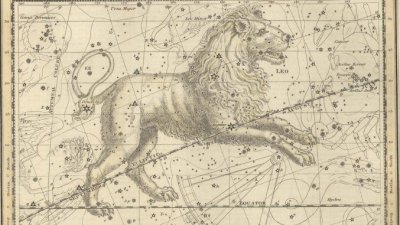 Лъв — Седмичен хороскоп (25 — 31 май)