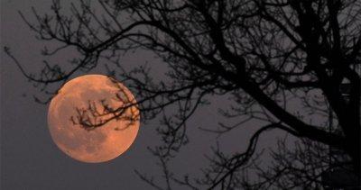 В 3:43 ч. наблюдавайте последната Супер Луна за 2019-а