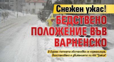 Снежен ужас! Бедствено положение във Варненско