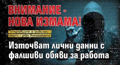 Внимание - нова измама! Източват лични данни с фалшиви обяви за работа