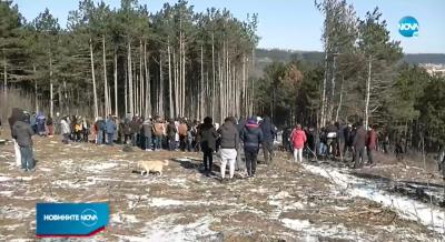 Варненци се вдигнаха на протест срещу изсичане на гора