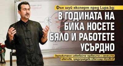 Фън шуй експерт пред Lupa.bg: В годината на Бика носете бяло и работете усърдно