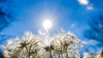 Високи температури днес и утре - нетипично топло за февруари