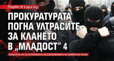 """Първо в Lupa.bg: Прокуратурата погна ултрасите за клането в """"Младост"""" 4"""